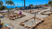 Neuer Friedhof, Bild 4